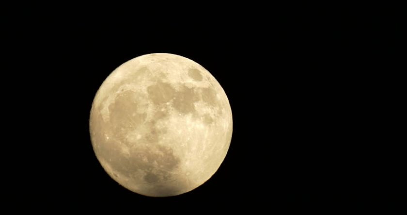november beaver moon
