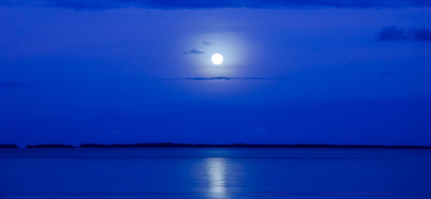 January Blue Moon